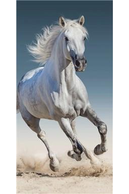 Osuška Kôň 03