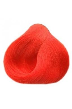 BLACK Sintesis Farba na vlasy 100ml - korálovo červená 6-60